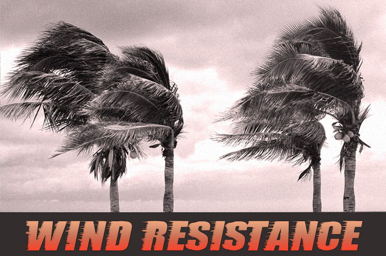 wind resistance, trees blowing in a storm